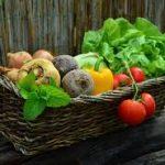 Aprende a plantar distintas verduras