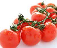 ✔Cultivar y plantar los diminutos tomates cherry